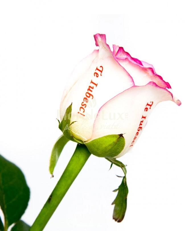 cele mai frumoase buchete sfantul valentin - locul 9