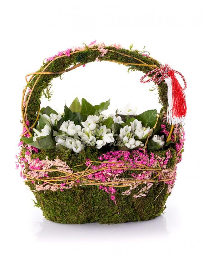 ghiocei in cos, cele mai frumoase flori de primavara