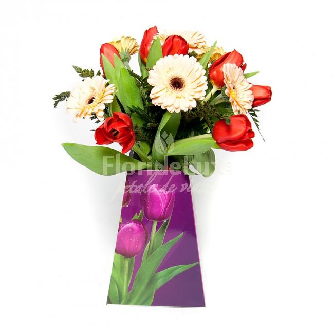 minigerbera in buchet, cele mai frumoase flori de primavara