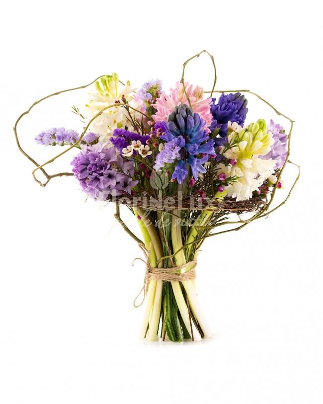 zambile, cele mai frumoase flori de primavara