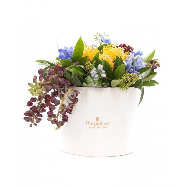 cele mai frumoase cutii cu flori - locul 10