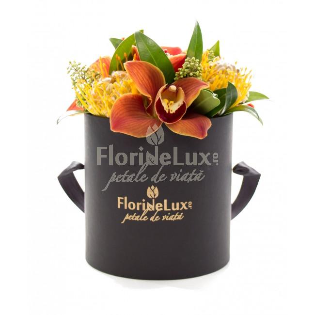 cele mai frumoase cutii cu flori - locul 3