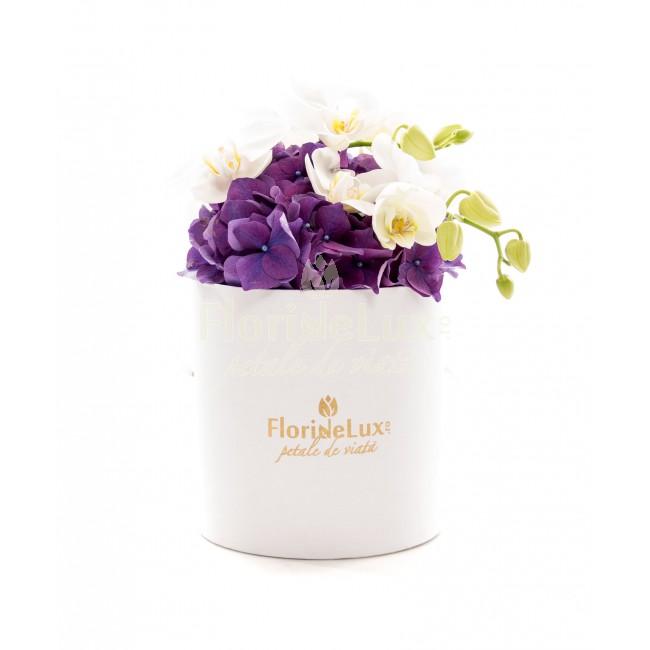 cele mai frumoase cutii cu flori - locul 4