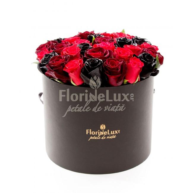 cele mai frumoase cutii cu flori - locul 8
