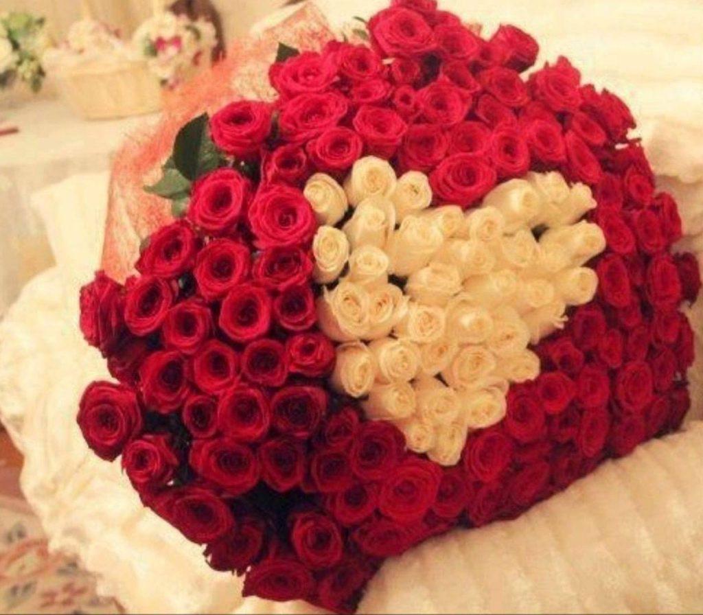 101 trandafiri - no.3