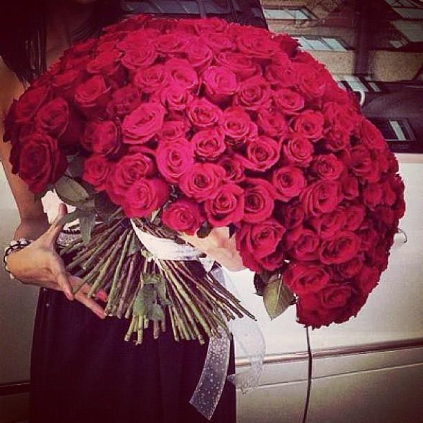 101 trandafiri - no.4