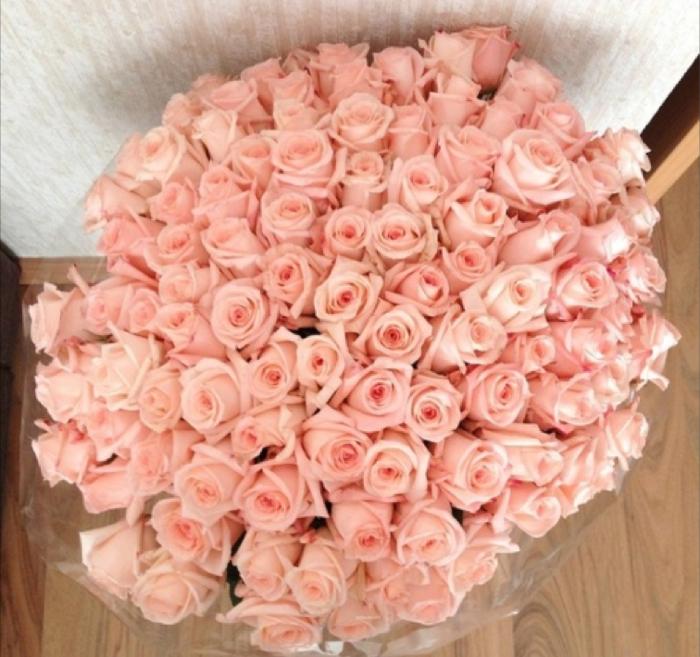 101 trandafiri no.5