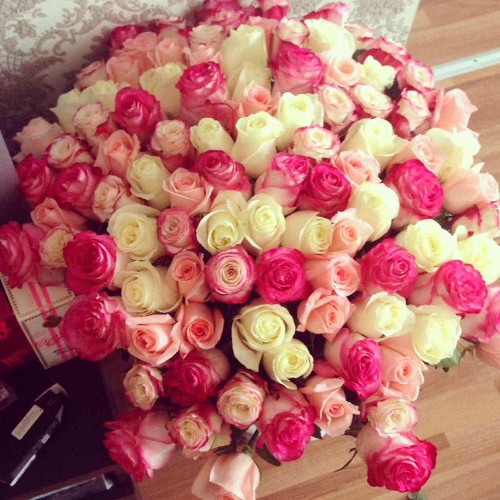 101 trandafiri no.6