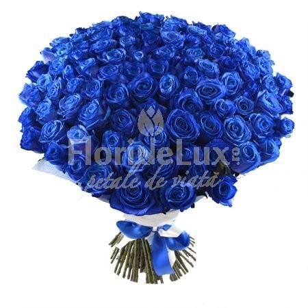101_trandafiri_albastri no.9