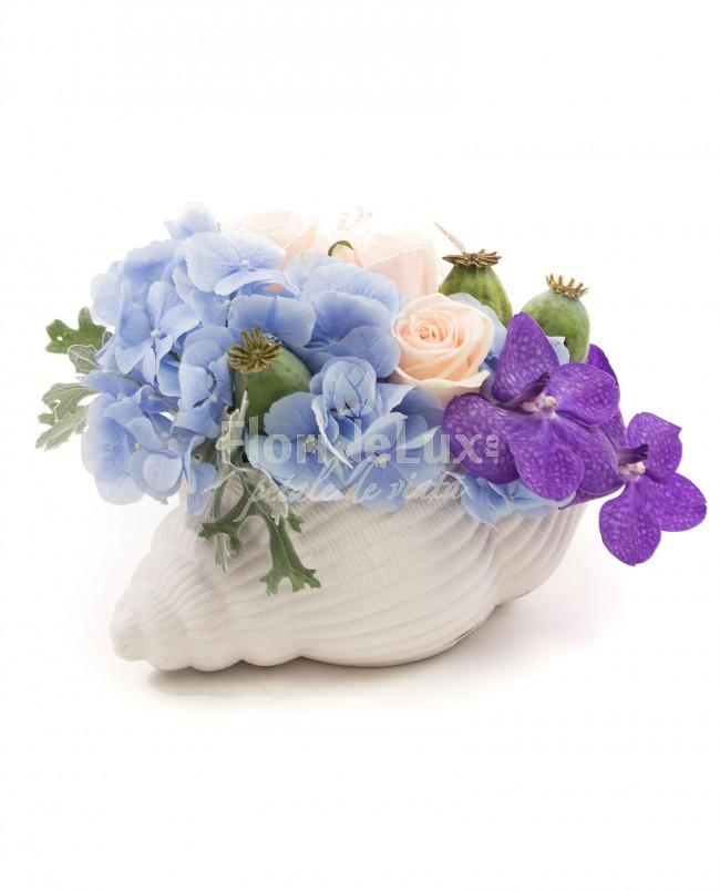 Top 10 cele mai frumoase flori de Sfantul Ilie - locul 3