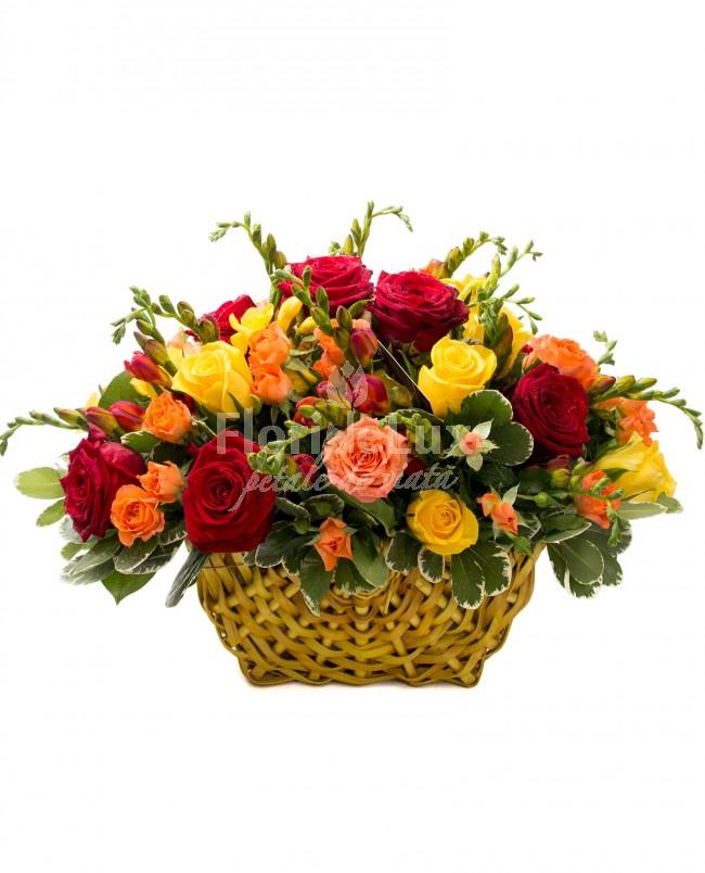 Top 10 cele mai frumoase flori de Sfantul Ilie - locul 6