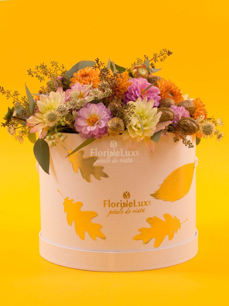 cutii flori de toamna