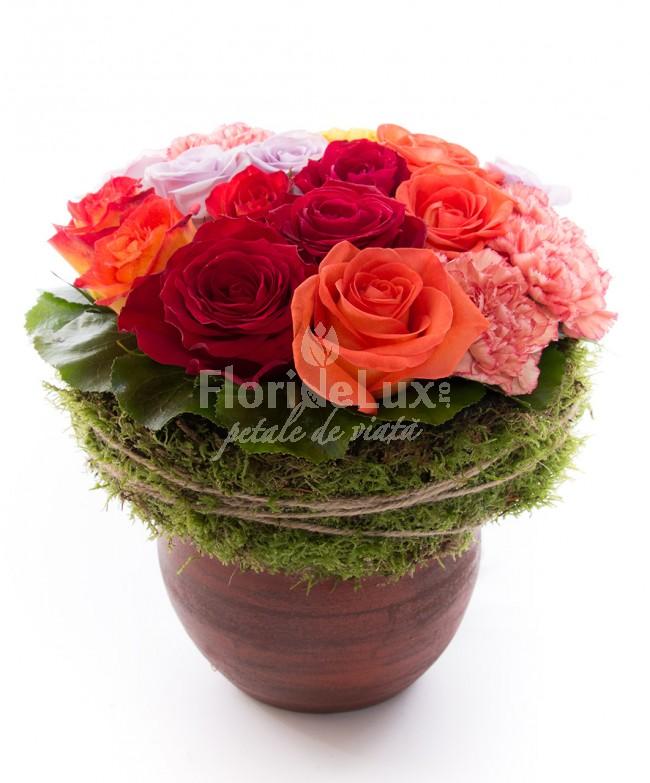 flori de toamna, citate de toamna, locul 3