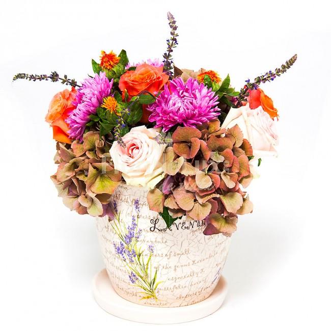 flori de toamna, citate de toamna, locul 5