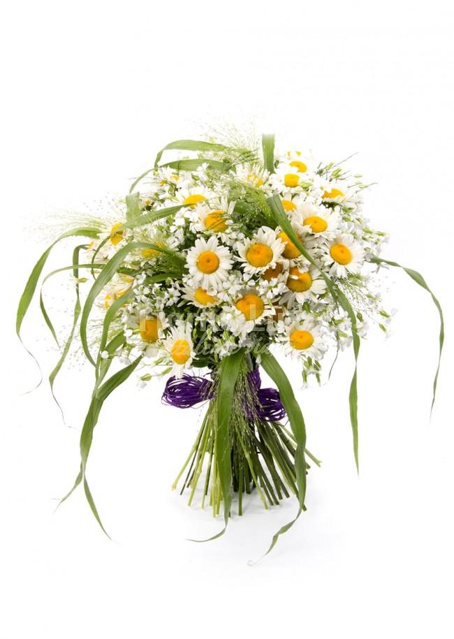 flori online, buchete margarete