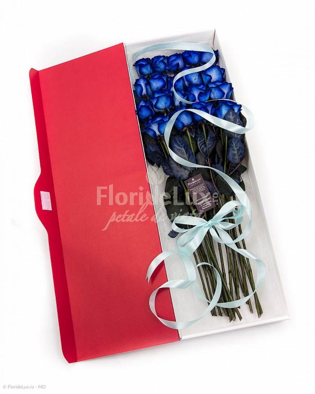 trandafiri albastri, flori online