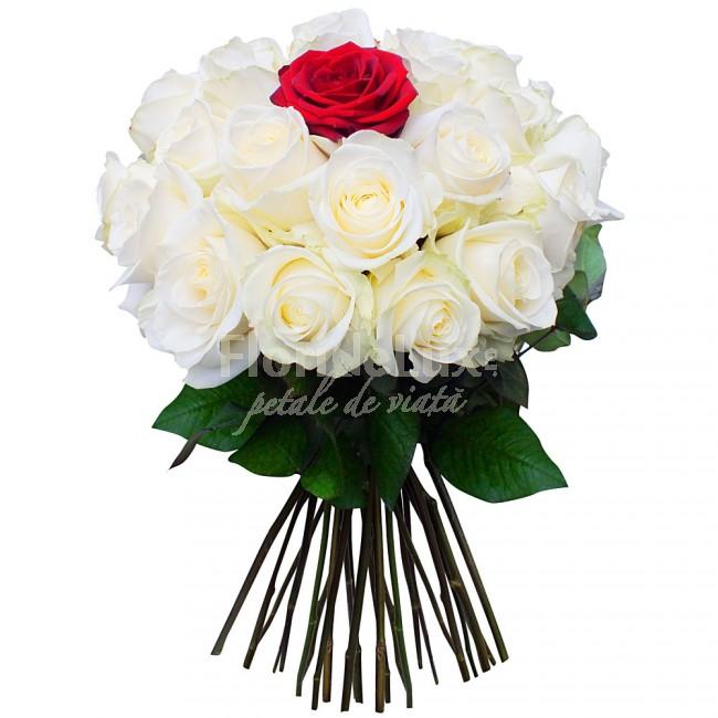 Buchete de trandafiri albi locul-6