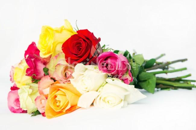 buchete trandafiri multicolori 5
