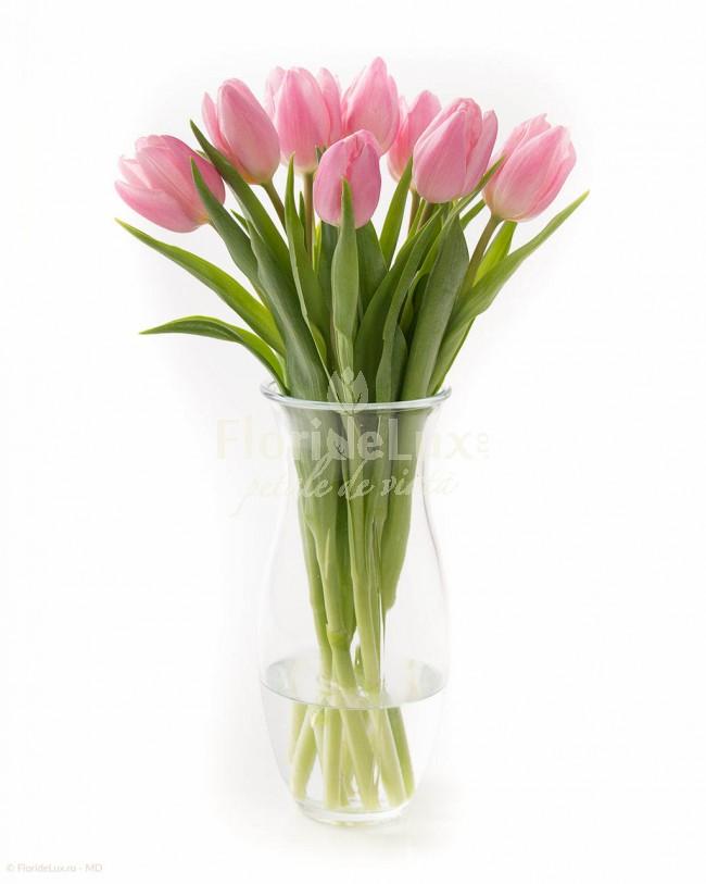 buchete-lalele-roz-in-vaza