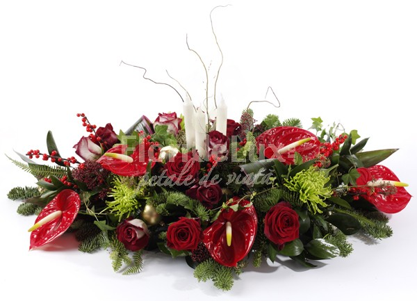 Aranjament de Craciun anthurium  https://www.floridelux.ro/aranjament-de-craciun-anthurium.html