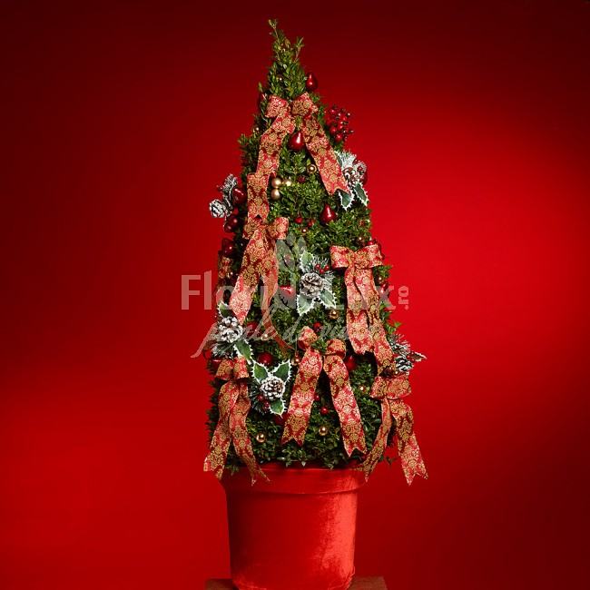 Aranjament Craciun  Brazi Craciun decorati  https://www.floridelux.ro/buxus-planta-tree-celebrations.html