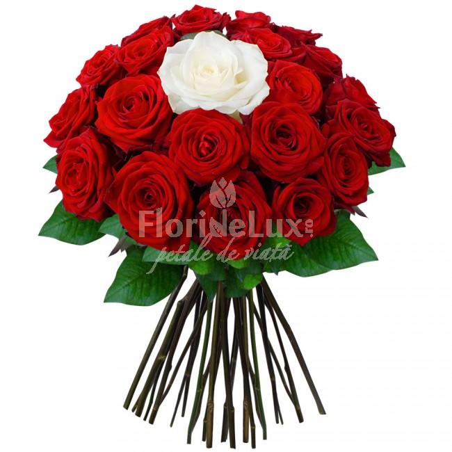 buchete_trandafiri_rosii_si_unul_alb