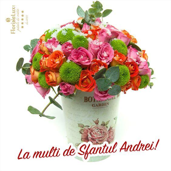 Mesaje flori de Sfantul Andrei