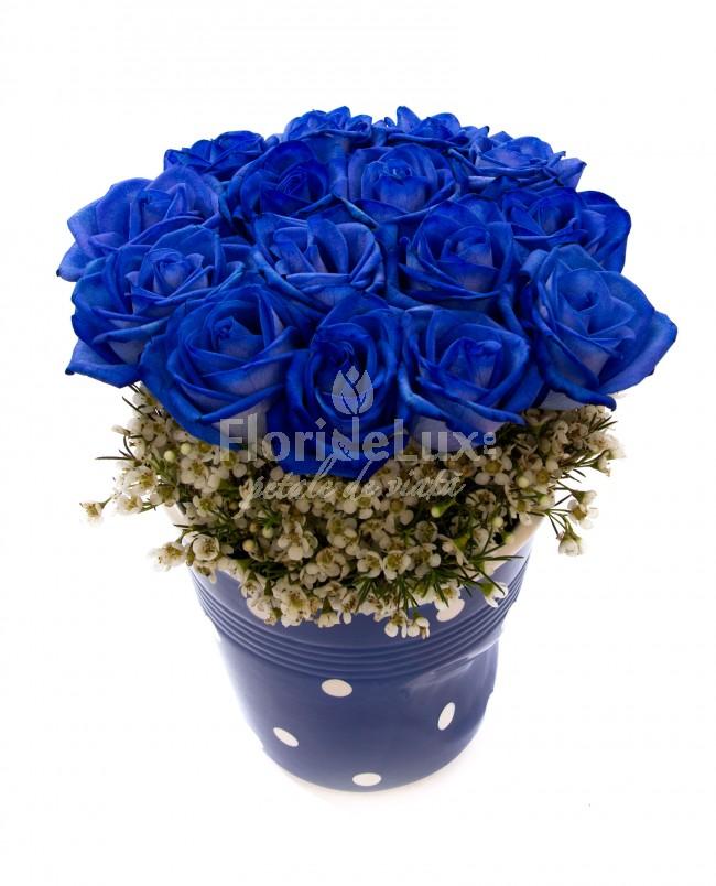 Flori online Bucuresti
