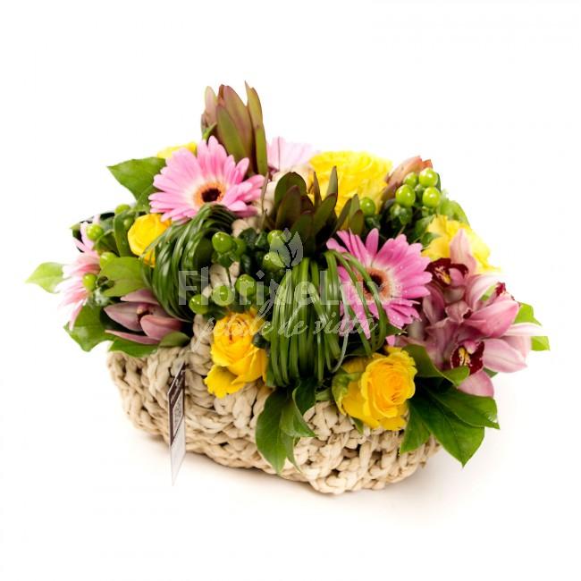 Florarie Bucuresti sector 3