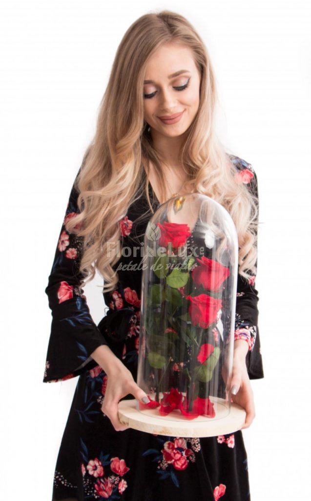 cupole trandafiri criogenati, flori pentru indragostiti