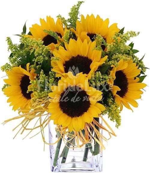 Buchete de flori de camp