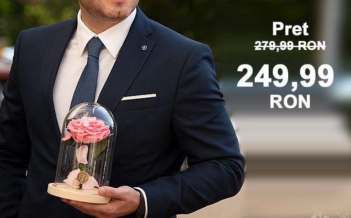 Florarie online si offline in Timisoara