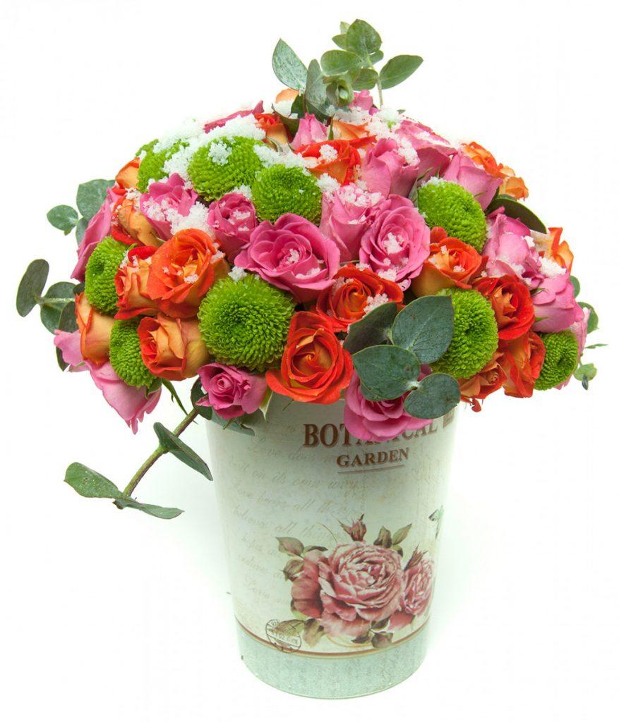 Gradina cu flori de gheata, doar 241.99 RON!