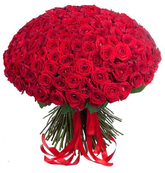 *Mesaje de ziua îndrăgostiților pentru soție, Buchet 201 trandafiri roșii