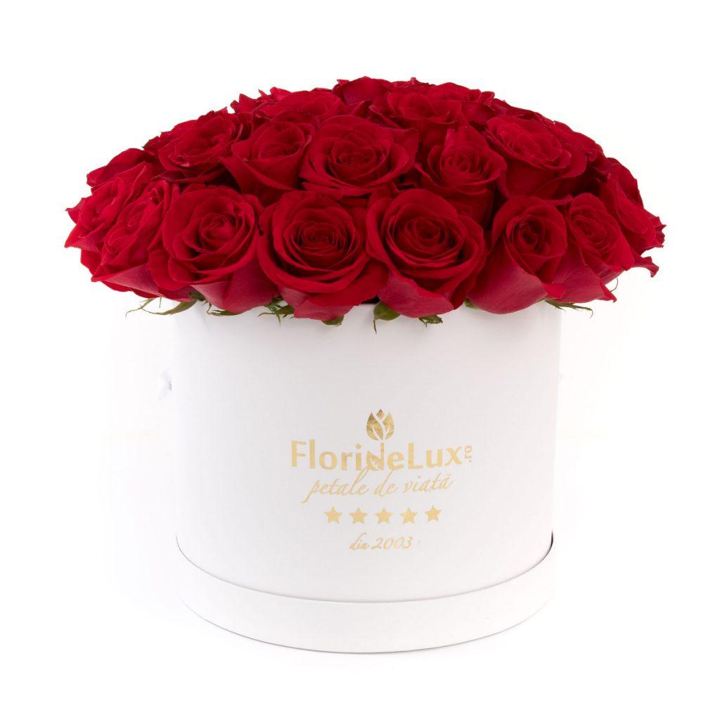 Trandafiri roșii în cutie de lux, doar 559,99 RON!