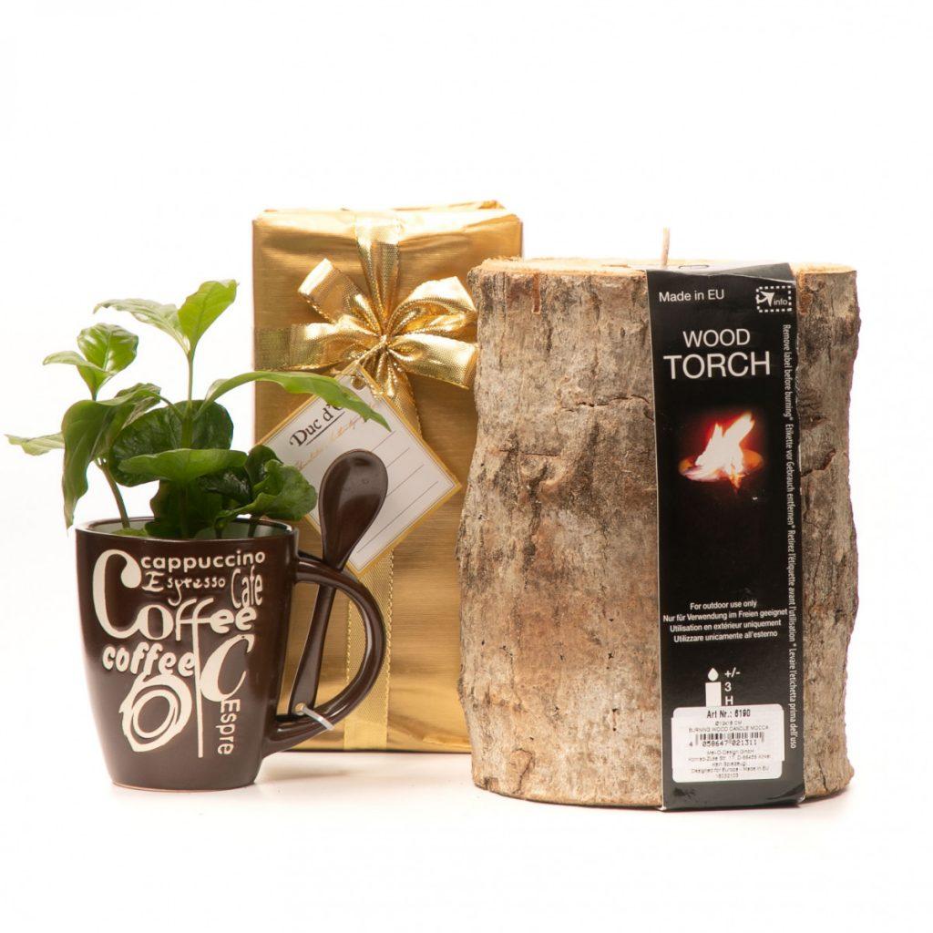 Cadou plantă de cafea, lumânare și praline, doar 189,99 RON!