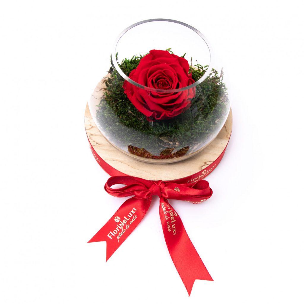 Trandafir etern in bol decorativ, doar 179 RON!