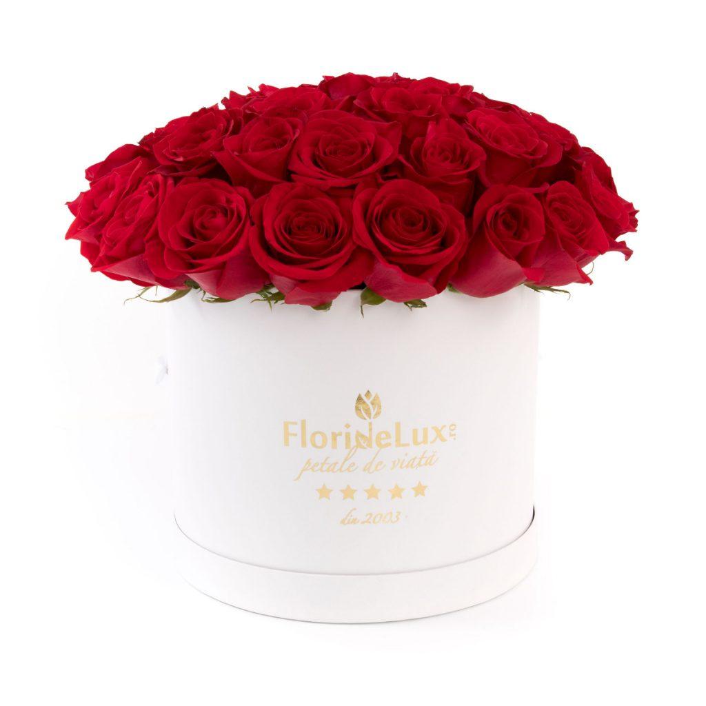 Florarie Buzau, Trandafiri rosii in cutie., doar 559,99 RON