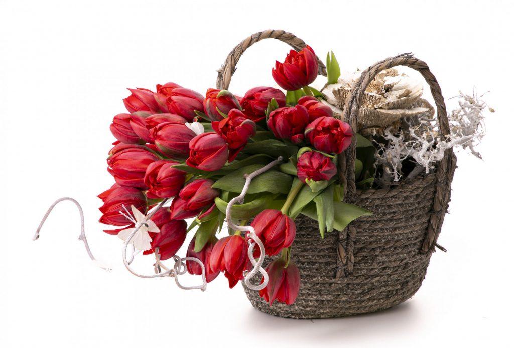 Cele mai elegante lalele rosii, doar 290,99 RON