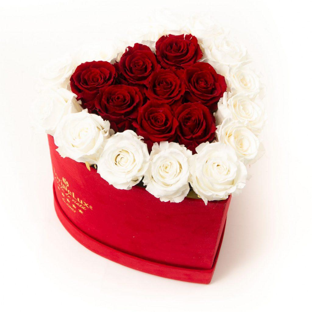 Cutie catifea cu trandafiri criogenați , doar 799,99 RON!