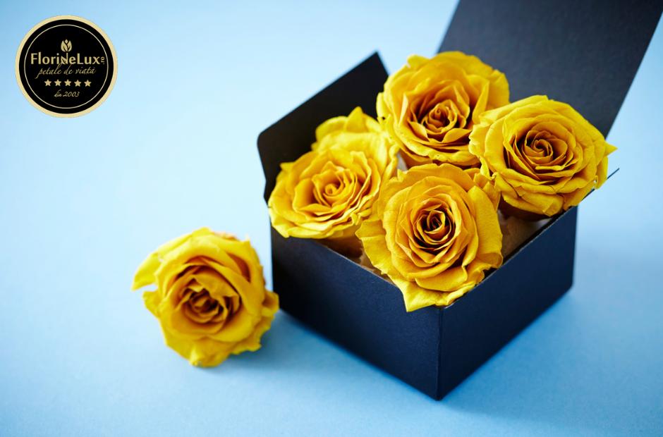 Trandafiri criogenați galbeni